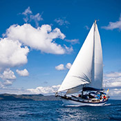 Sailing Opportunities